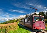 Chamonix French Alps Day Tour from Geneva
