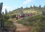 Caribbean - Aruba: Arikok Hiking Tour