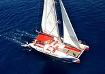 3 hr watching and listening whales in Tenerife exclusive catamaran free catering