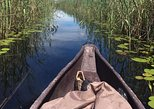 1 Day Mokoro in Okavango Delta,Botswana