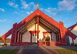 Kahukiwi Experiences Luxury 4WD 3hour Guided Maori Tour