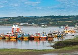 Full-Day Tour Chiloe Island: Ancud - Castro and Dalcahue from Puerto Varas
