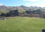 Explore Waipara Wine Tour