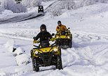 1-Hour ATV Quad Adventure from Reykjavik