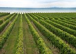 Konzelmann Estate Winery Tour and Tasting in Niagara-on-the-Lake