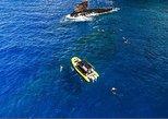 4 Hour Lanai Snorkel Dolphin Watch HALF DAY