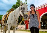 The Mayan Frontier by Horseback and Beach