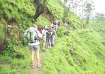 Trekking Through the Forest and Mountain View From Ella, Haputale, Bandarawela