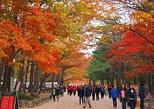 The Beauty of the Korea Fall Foliage Discover 11days 10nights