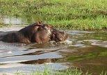 Africa & Mid East - Botswana: 3 Days Mokoro Safari in Okavango Delta, Botswana