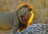 Africa & Mid East - Botswana: Chobe National Park Safari Day Trip from Vic Falls