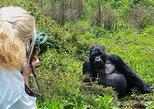 1-DAY RWANDA GORILLA TOUR