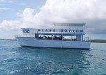 Glass Bottom Reef & Shark Encounter Tour