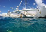 Catamaran Day Trip, Snorkeling & Sailing Excursion