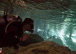 3 Cenote Dives - Casa & Dos Ojos