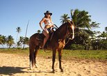 Best Horseback Riding Excursion on the Beach in Punta Cana 1 and 2 hours tours