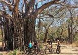 Las Pilas Waterfall e-Bike Tour