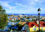 Punta Arenas All-Inclusive Shore Excursion