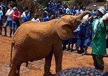 1 Day Nairobi Excursion