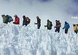 Climbing Kilimanjaro Lemosho Route 7 Days