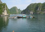 2DAYS - 1NIGHT Cat Ba National Park-Lan Ha Bay-Fisherman Floating House Sleeping