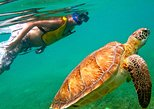 CENOTE CAVE AND AKUMAL TO SWIMMING WITH TURTLES FROM PLAYA DEL CARMEN