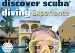 PADI Discover Scuba Diving Course (3-4hrs)