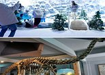 Day-Tour Highlights Hyderabad: Snow world and Birla Science Museum, lunch includ