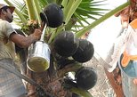 Pondicherry Village visit - Palm Wine (Toddy) Trail with Transfers