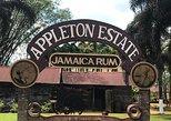 Appleton Rum Factory YS Falls Black River Safari Lunch BeachHorseback Ocean Swim