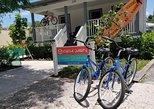Hourly Bicycle Rental