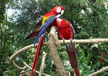Auto Safari Chapin Drive-Through Nature Park & Zoo from Puerto Quetzal