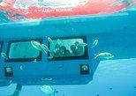 Semi-Submarine Regular Tour