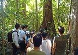 Half Day Langkawi Jungle Trek