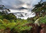 Australien & Pazifik - Neuseeland: Tagestour Rotorua Eco Thermalbad in einer kleinen Gruppe