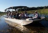 1 Day Boat tour in Okavango Delta, Botswana