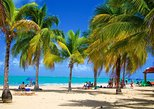 Full-Day Yunque Rainforest and Luquillo Beach Adventure in San Juan