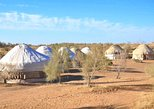 2 days Desert Yurt Camp tour