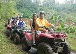 ATV QUAD BIKE & UBUD MONKEY FOREST TOUR