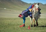 2 day Mongol nomadic and National Parks tour