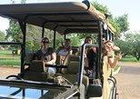 1 Day Safaris in Pilanesberg National Park leaving from Johannesburg