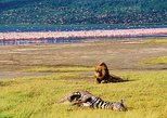 2 DAYS LAKE NAKURU SAFARI