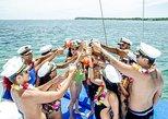 Booze Cruize Half Day From Punta Cana