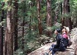 3-1 Muir Woods Visit with Sausalito & Half Day Wine Country (All fees included)