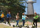 Zip Through Gate Park to Ocean Beach & Windmills Electric Scooter Tour 2.5 Hrs