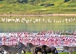 5days Tanzania honeymoon safari: Tarangire, Lake Manyara & Ngorongoro crater