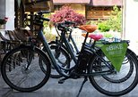 Rent an eBike in Bled