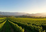 Social Yarra Valley Winery Trip:Wine,Cheese,Picnic,Live music,Ciders,Small group