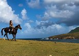 Caribbean Beach Horseback Ride and Swim Experience in St Lucia