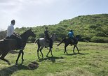 Four Beaches Caribbean Horseback Ride and Swim Experience in St Lucia